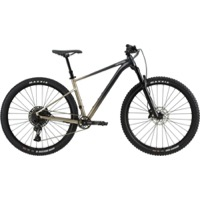 "Cannondale Trail SE 1 29"" Complete Bike 2021 - Meteor Gray"