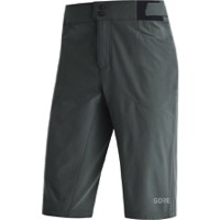 Gore Passion Men's Shorts 2021 - Urban Grey