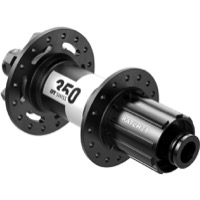 DT Swiss 350 6-Bolt Disc Rear Hub 2021