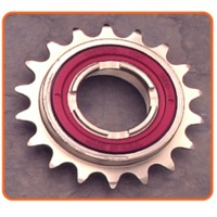Freewheel Removal/Installation