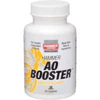 Hammer Anti Oxidant Booster