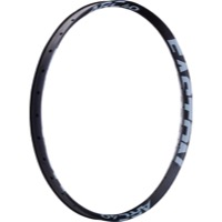 "Easton Arc+ 40 29"" Rims"