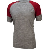 Ibex W2 Sport Men's T-Shirt - Stone Gray/Heather Rhubarb